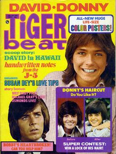 Tiger Beat ~ All three of my teenage heartthrobs on the same cover!  I think I may still have this issue . . . somewhere. . . !