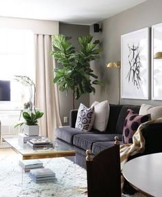 Small Room Solutions: Living Rooms | Pinterest | Wall trim, Sheer ...