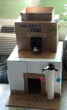 Making a Kitty Condo- Good Craft Project for the Kids