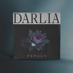 Darlia - Petals. Art Direction by SamuelBurgess Johnson