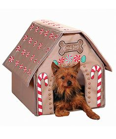 Take a look at this Gingerbread  Pet House by Etna Products on #zulily today!