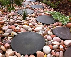 Round pavers with river rock : eclectic landscape by sustainable garden design perth Round Pavers, Round Stepping Stones, Path Design, Landscape Design, Garden Design, Design Ideas, Creative Landscape, Rock Design, Bed Design