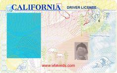 California Fake Id Template
