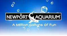 Newport Aquarium - near Cinncinatti. Started getting emails for no reason one day.