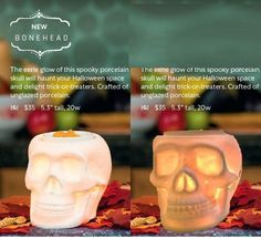 Scentsy Fall Harvest 2014 available Sept 1st, 2014 $35 for Bonehead www.superawesome.scentsy.us