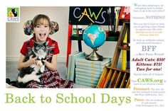 Back to School adoption special!