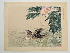 Japanese WOODBLOCK - IMAO KEINEN - Bird in Pond - c. 1900