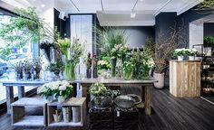 Blumen Koch, Berlin - Meisterbetrieb für farblich fachgerechte Gestaltung