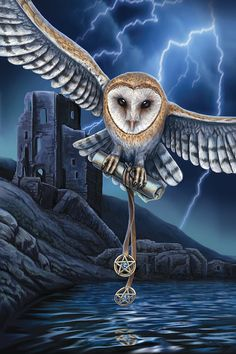 Lisa Parker art - cat artist and gallery magical cat artworks, wolves, dragons, unicorns and more. Heart Of The Storm, Lisa Parker, Owl Artwork, Owl Wallpaper, Owl Pictures, Witch Art, Cross Stitch Art, Magical Creatures, Fantasy Artwork