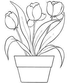jarne kvety omalovanky - Google keresés