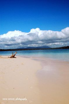 Vanishing Island Surigao. It's more fun in the Philippines