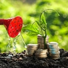 Startup funding events in india. Startup funding how it works. Save The Planet, Finance Tips, Economics, Planer, Wealth, Saving Money, Things To Think About, How To Make Money, Investing