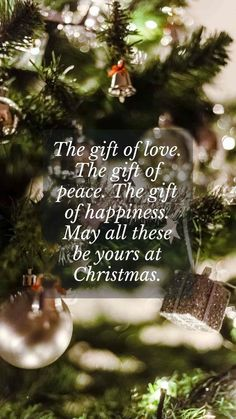 Merry Christmas bible verses messages Xmas greetings quotes. May your world be filled with warmth and good cheer this Holy season, we wish you a joy-filled Christmas. #merrychristmasbibleverses #merrychristmasmessages #merrychristmaschristianquotes Merry Christmas Greetings Message, Short Christmas Wishes, Christmas Wishes Quotes, Christmas Bible Verses, Xmas Quotes, Xmas Wishes, Christmas Messages, Christmas Humor, Inspirational Christmas Message
