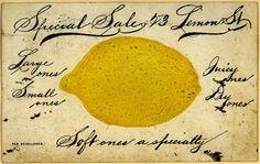 Vintage ephemera — lemon + calligraphy.
