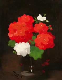 """Flower Study, Red and White Geraniums"" By James Stuart Park, from Scotland (1862 - 1933) - oil on canvas; 50 x 39 cm - Royal College of Physicians and Surgeons of Glasgow"