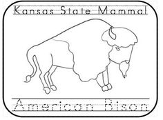 In honor of kansas day here is a pack of kansas state for Kansas state symbols coloring pages