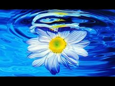 💖Deep Meditation Sleep Music, Soothing Relaxation Music🎶 - YouTube Blue Drawings, Cool Drawings, Drawing Sketches, Pencil Drawings, Drawing Board, Pencil Art, Drawing Ideas, Drawing Drawing, Mosaic Crosses
