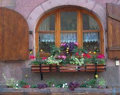 アルザスの窓