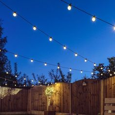 Low voltage festoon lights with 20 warm white LED bulbs per 8 metre length, perfect for indoor and outdoor use. Our versatile LED festoon lights have unlimited uses and come with our 12 month warranty. Ideal places to use these lights are in be Outdoor Fairy Lights, Outdoor Garden Lighting, String Lights Outdoor, Small Garden Lights, Garden Fairy Lights, Garden Lighting Festoon, Garden Lighting Bulbs, Small Garden Party Ideas, Outdoor Battery Lights