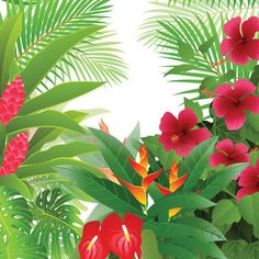 Tropical Flower Palm Trees Jungle Background - http://www.welovesolo.com/tropical-flower-palm-trees-jungle-background/