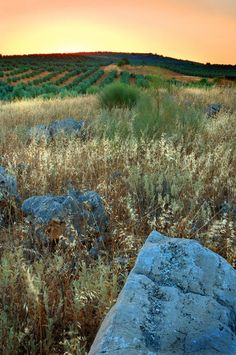 Andalucian Blue Stone by Mal Bray Photographer. Landscape, Photography.