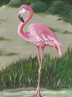 Pink Fellow Print By Dana Kelley Carter