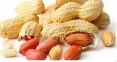 These 12 homes of peanuts have quite a few benefits – from health to beauty. It is good for coronary hearthealth A number of the blessings for human health, it seems to be the...