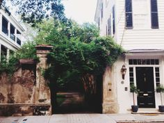 Legare Street, Charleston, SC #southofbroad #charleston #legarestreet #charm