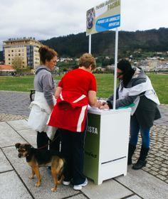 Aguantando el viento en Narón. Estamos recogiendo 15.000 firmas para poder presentar nuestra candidatura en defensa de los animales a las elecciones europeas. Más info en nuestra web: http://www.pacma.es/n/15618/en_marcha_para_recoger_15_000_firmas_para_las_elecciones_europeas