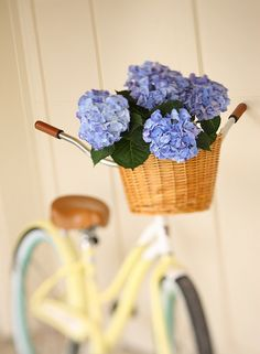 Bicycle with flowers in basket by Daniel Hurst Photography, via Flickr