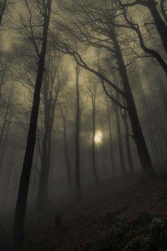 I want to walk here....