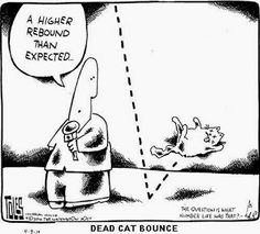 The News in Shorts: Tories Celebrate Dead Cat Bounce.