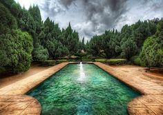The Alien Garden - by Trey Ratcliff
