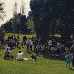 Play date in the gardens by #wdea #love3280 #kids3280 #destinationwarrnambool #live3280 #Warrnambool by destinationwarrnambool