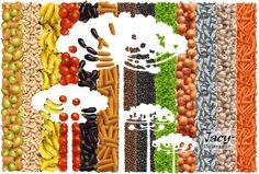 Ilustração hiper-realista - Araucária, - - Feita em Photoshop