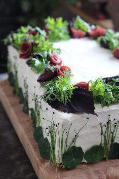 Food Art, Nom Nom, Succulents, Baking, Desserts, Plants, Cakes, Gastronomia, Salve Recipes