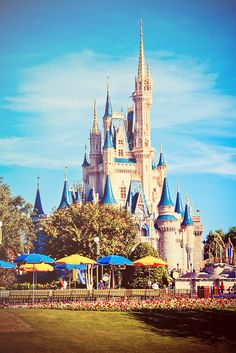 Walt Disney World in Orlando, Florida -- We went in October 2001. It was nice to escape to the happiest place on earth when the rest of the world was so dark.