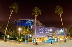 The Florida Aquarium at Night