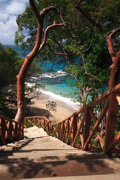 Caribbean, St. Lucia #caribbean