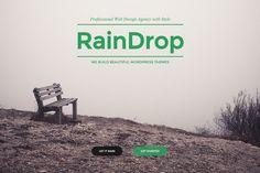 Check out RainDrop - A Multipurpose Theme by PremiumCoding on Creative Market