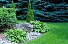 Landscaping With Rock and Plants