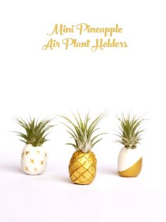 Kids love making this easy clay craft! Diy Clay, Clay Crafts, Kid Crafts, Air Plants, Indoor Plants, Pineapple Punch, Cornish Cottage, Craft Shed, Floral Arrangements