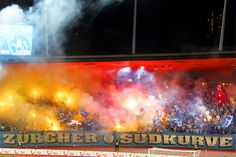 Fcz zürcher südkurve fc zürich fussball fans My Passion, Painting, Football Soccer, My Crush, Painting Art, Paintings, Painted Canvas, Drawings