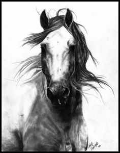 """When I bestride him, I soar, I am a hawk: he trots the air; the earth sings when he touches it; the basest horn of his hoof is more musical than the pipe of Hermes. ""  ― William Shakespeare, Henry V"