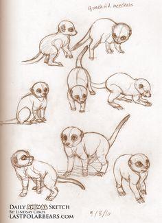 Daily_Animal_Sketch_040
