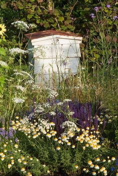 Beehive integrated into the garden with flowers and wildflowers nearby