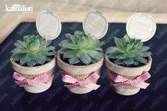 www.kamalion.com.mx - Recuerdos / Giveaways / Detalles Personalizados / Vintage / Bautizo / It's a girl / Rosa / Pink / Mini Macetas / Plant / Suculenta / Flower pot.