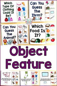 Develop language skills with these interactive books that are all about the features of objects. These adapted books are perfect for special education classrooms, speech therapy, self-contained classrooms, life skill programs and pre-school classes. Students love to participate and get their hands on these books!!