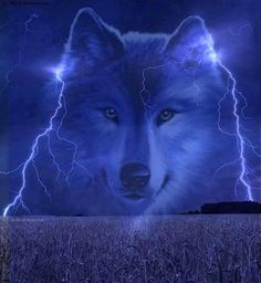 wolf in the sky outlined with lightning