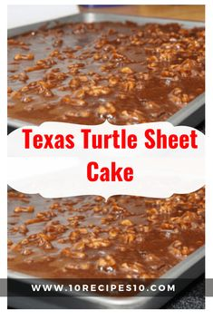 Texas Turtle Sheet Cake - - =Recipes You must try ( Skinny ) - Blechkuchen Turtle Sheet Cake Recipe, Sheet Cake Recipes, Turtle Cheesecake Recipes, Banana Recipes, Mini Cakes, Cupcake Cakes, Cupcakes, Hazelnut Cake, Jelly Roll Pan